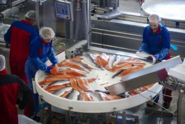 Nga cấm nhập khẩu thủy sản Na Uy qua Belarus