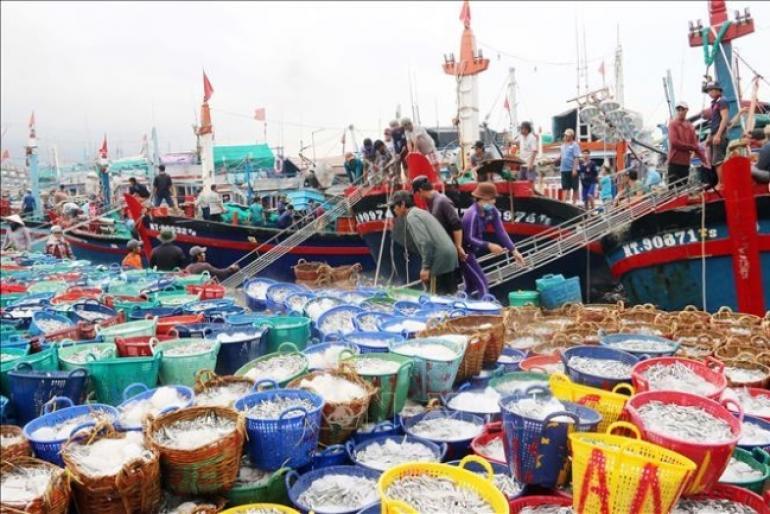 Xuất khẩu hải sản Việt Nam đạt khoảng 3,2 tỷ USD năm 2019