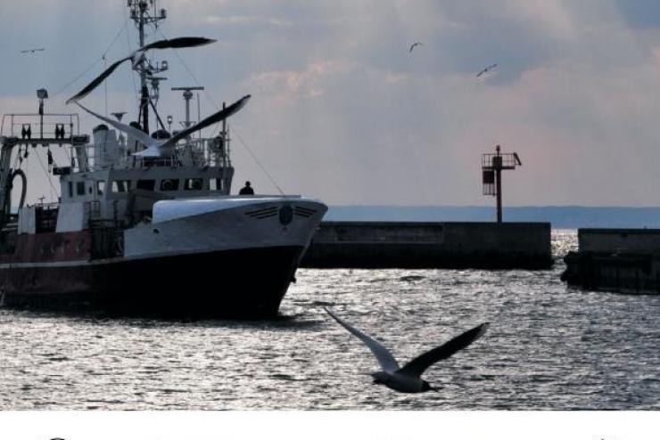 EU đứng đầu về giám sát thủy sản nhập khẩu