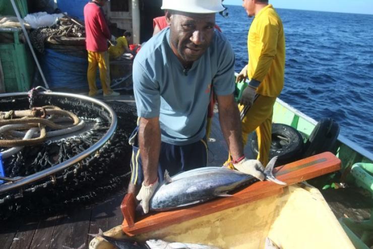 Cá ngừ nguyên liệu Micronesia xuất sang Thái Lan tăng