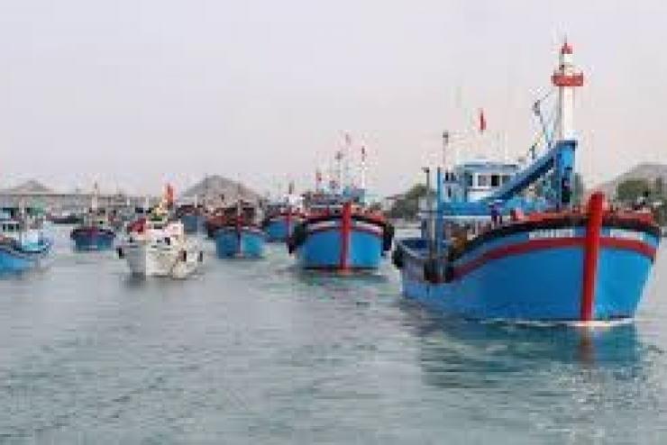 Các nhiệm vụ cấp bách, trọng tâm về chống khai thác hải sản IUU trong tháng 2/2020