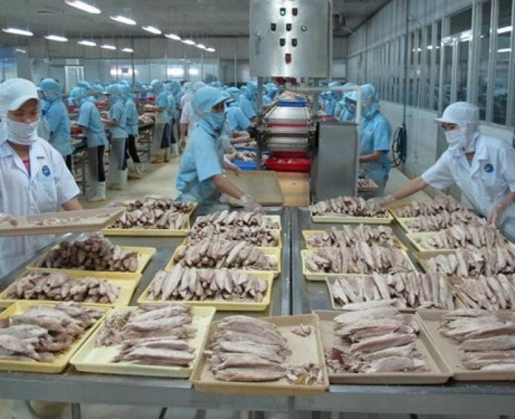 """Trung Quốc """"rời khỏi"""" top thị trường xuất khẩu lớn của cá ngừ Việt Nam"""