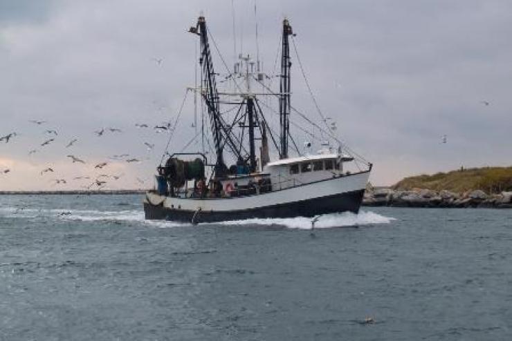 Brexit: Tàu EU khai thác thủy sản ở vùng biển của Anh cần có giấy phép
